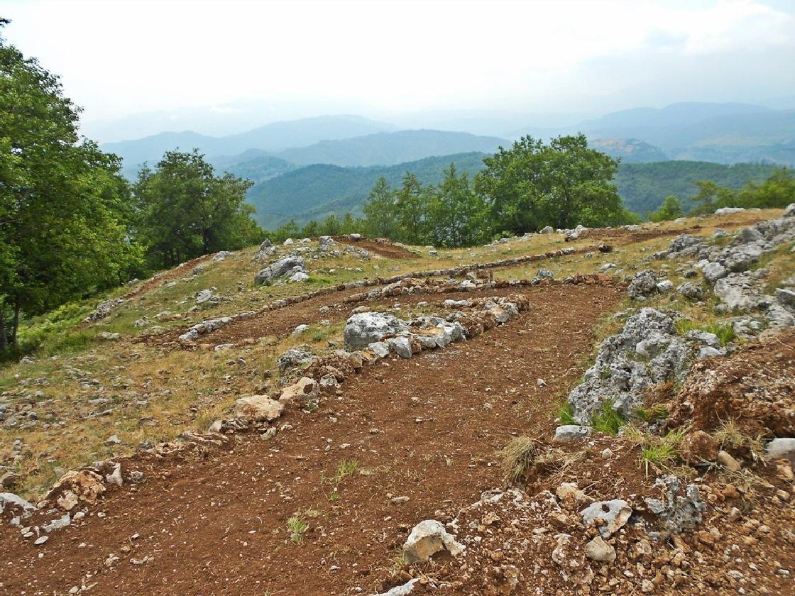 Bosco incantato del monte Cocuzzo