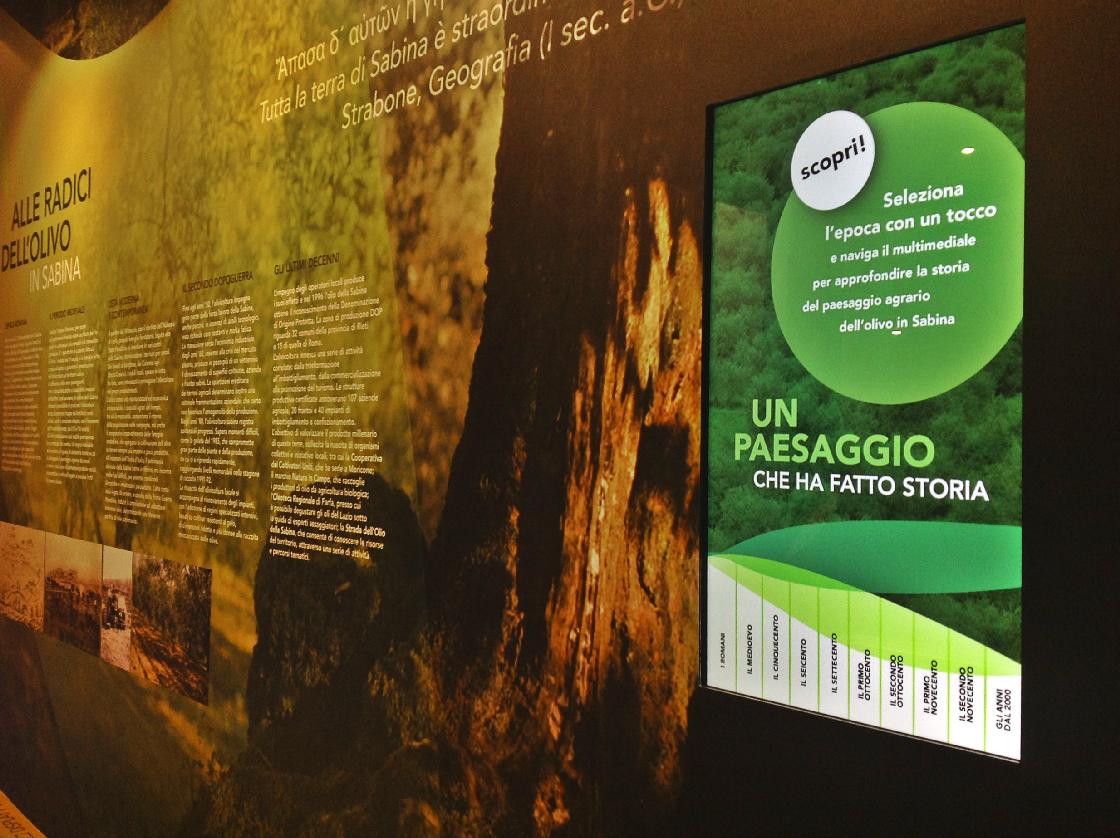 Allestimento museo dell'ulivo e infopoint